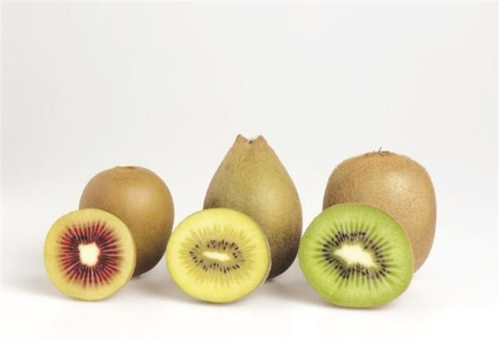 不同颜色的猕猴桃啥区别