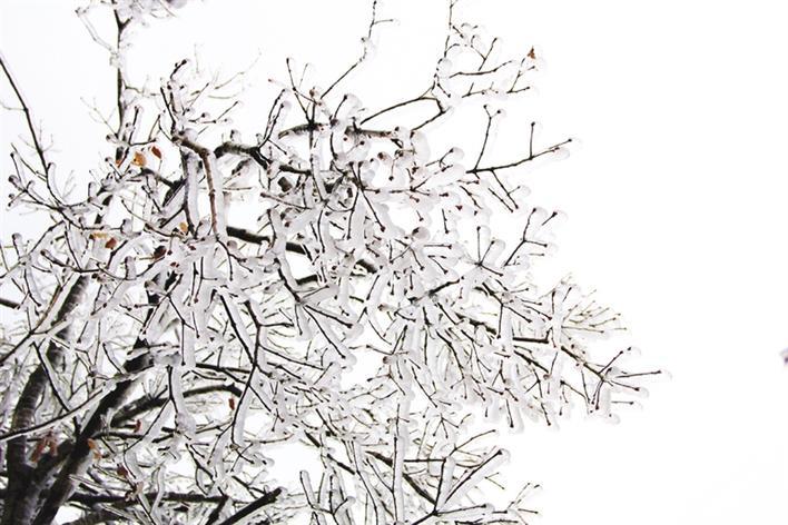 琉璃世界,冰雪襟怀。