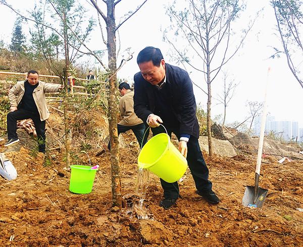 叶红专等州领导参加全民义务植树活动