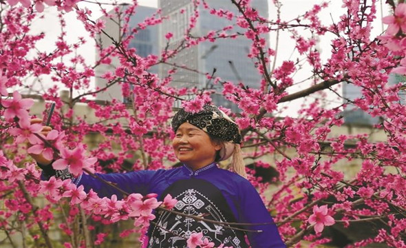 春到民族文化园