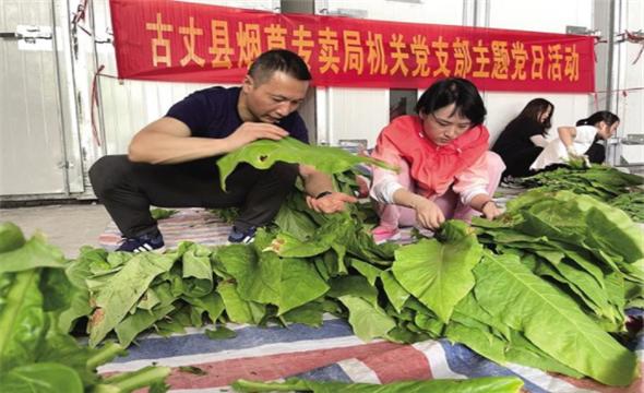 服务烟农助增收
