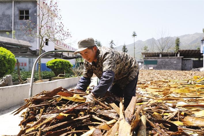 搭建平台 助农增收